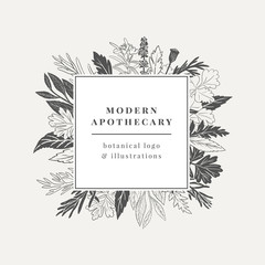 Apothecary Logo. Hand drawn botanical illustration with various plants and herbs.