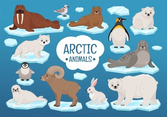 Vector set of cute arctic animals.