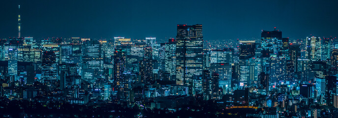 Photo sur Aluminium Bleu nuit Tokyo city at night