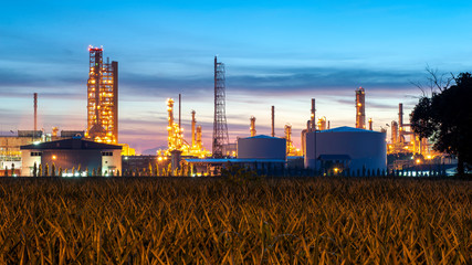 Oil and gas refinery plant or petrochemical industry on sky rise background, Factory with morning, Oil or chemical storage tank in petrochemical industrial