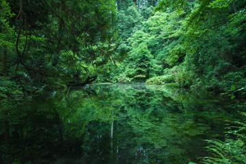 Foto op Aluminium Natuur Hidden Beautiful nature spot, Ishikawa, Japan
