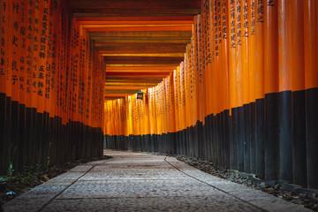Poster de jardin Kyoto Red Torii gates in Fushimi Inari shrine in Kyoto, Japan