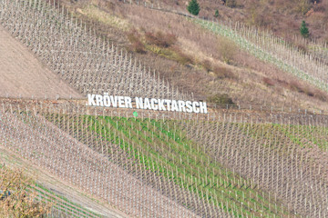 TRABEN-TRARBACH , GERMANY - MÄRZ 26, 2016: Billboard in the vineyards with inscription Kröver Nacktarsch. German wine-growing region on the Moselle near Traben-Trarbach, Rhineland-Palatinate, Germany,