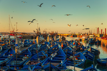 The famous blue boats in the port of Essaouira.