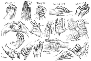 vintage art - advanced Hand gestures, hand-drawn Hands, retro style, black and white