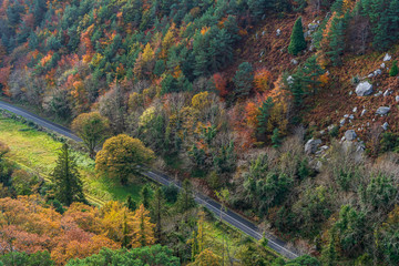 Scenic country road through hills covered with trees, view from above on a lovely fall day. Autumn countryside scenery in Co. Wicklow, Ireland.