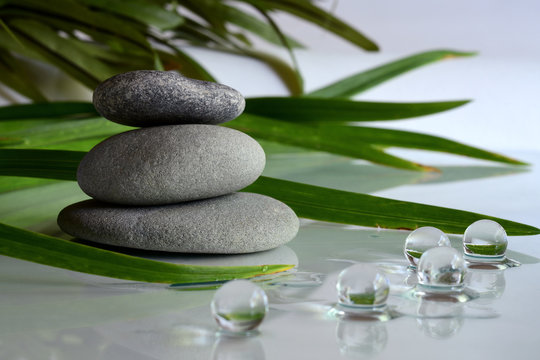 Mindful nature