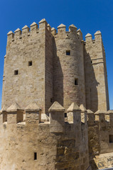 Fotomurales - Historic city gate Torre de Calahorra in Cordoba, Spain