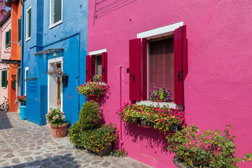 Garden Poster Pink Panoramic view of brightly coloured homes of Burano