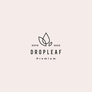 drop leaf logo hipster retro vintage vector icon