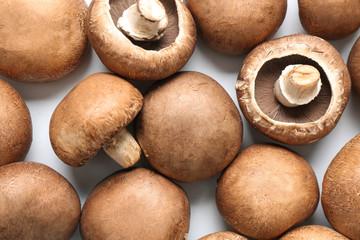 Fresh champignon mushrooms on white background