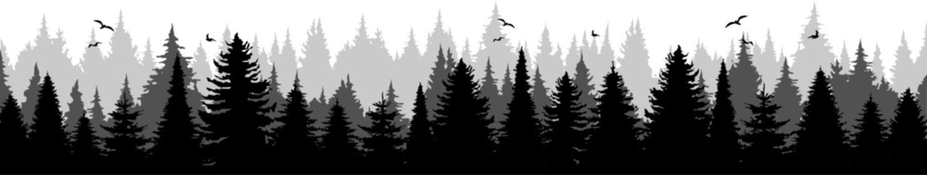 Conifer Tree Forest Landscape Vector Silhouette