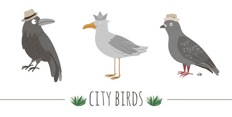 Vector illustration of funny seagull, raven, pigeon with poo. Sea or city birds in hats picture isolated on white background. Flat cute animal character clip art..