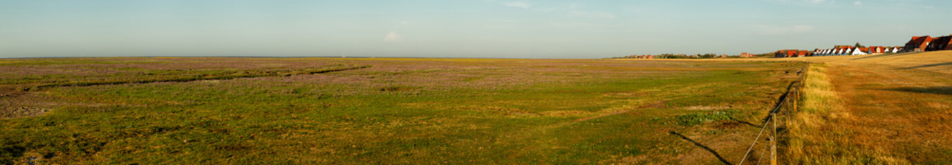 Wall Mural - Panorama of the salt marshes on the East Frisian Island Juist in the North Sea, Germany.