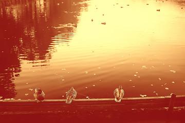 Recess Fitting Magenta gloomy autumn on the lake sadness / autumn stress, seasonal landscape nature on the lake