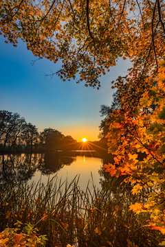 Sunset fall landscape at lake with colorful leaves on tree