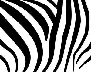 Zebra pattern. Abstract geometric pattern. Black and white animal skin background. Trendy stylish vector wallpaper.