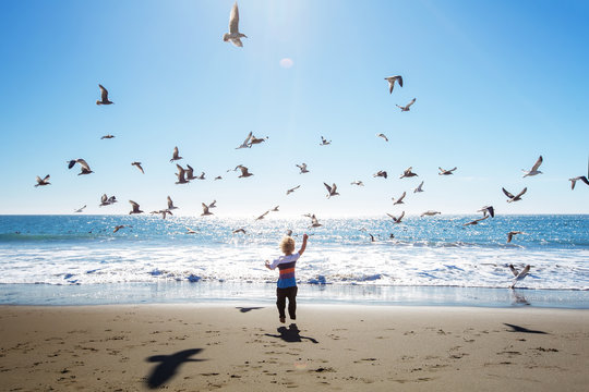 Happy and free boy on the beach with seagulls