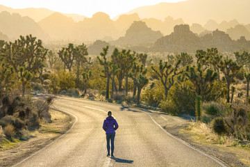 Woman walks down the empty freeway leading through Joshua Tree National Park