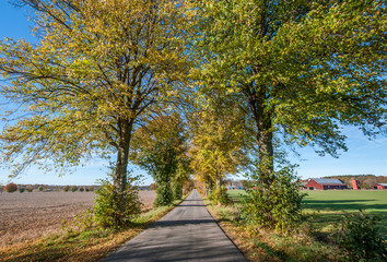 The countryside of Ostergotland during autumn in Sweden