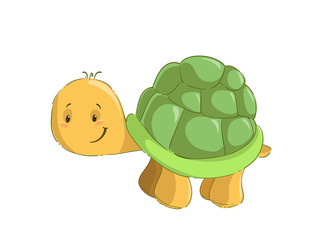 Baby turtle isolated on white background cartoon clipart