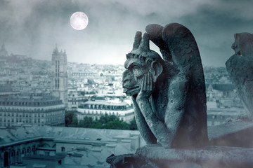 Foggy Night and Moon Light over The Gargoyles of Notre Dame in Paris Fotomurales