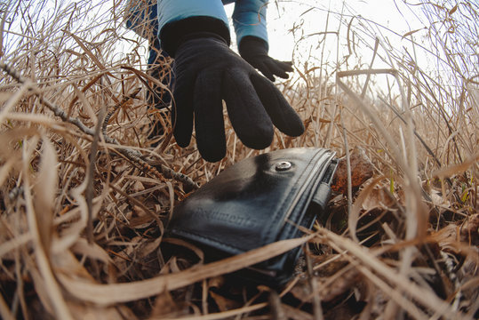 Lost wallet in a grass on the ground and female hand picking up it from a ground. Close up. Fisheye view.