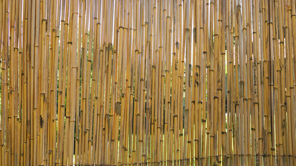 bamboo plank fence texture, old brown tone for background