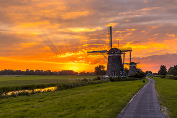 Wall Mural - Wooden windmills in a row at orange sunset