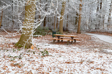 table and bench in snowy winter forest