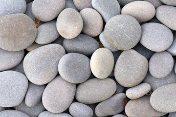 Small stones in various shades of gray.
