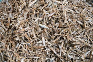 Sardellen Sardelle Fisch Schwarmfisch  Planktonfresser Schwarm Essen Fischmarkt Speisefisch Markt roh frisch frischer kleiner Heringsart Sardellenpizza  Makro Engraulidae Clupeoidel Otomorpha