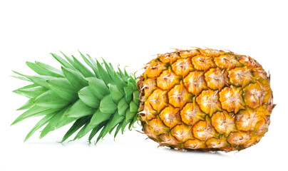 Wall Mural - single fresh ripe pineapple isolated on white background