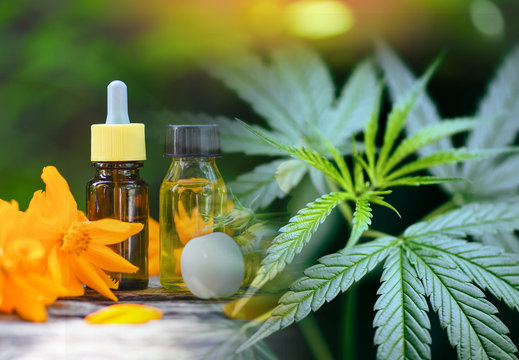 CBD products cannabis leaf aromatherapy herbal oil bottles aroma with flower on nature green background - Marijuana plant essential oils natural and organic minimalist lifestyle natural ingredients