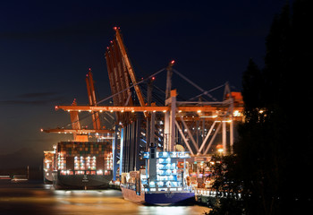 Container ships are loaded at a loading terminal in the port of Hamburg