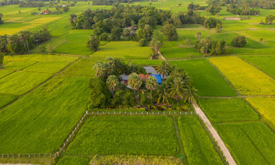 Green ricefield landscape in the countryside at thailand