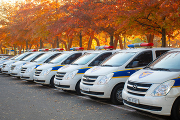Seoul, South Korea November 8, 2019  Lots of Korean Police cars are parking in the Parking lot with beautiful Autumn scene tree at the background.