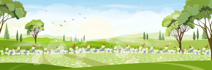 Panorama view of a beautiful summer city park,Vector cartoon Summer landscape with butterfly flying over daisy field, Nature scene with town and hill, fresh spring  scenery