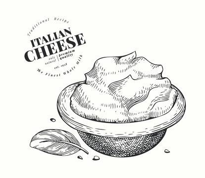 Italian mascarpone illustration. Hand drawn vector dairy illustration. Engraved style cream cheese. Vintage food illustration.