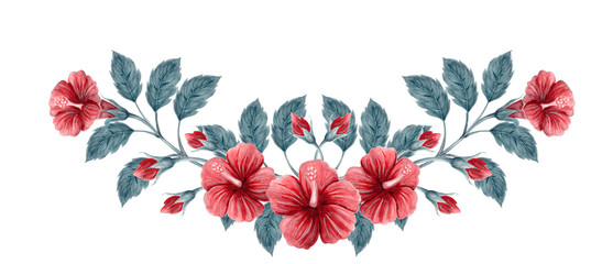 Hand drawn watercolor painting  with pink Chinese Hibiscus rose flowers isolated on white background