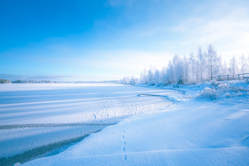 Cold winter day landscape with snowy trees. Photo from Sotkamo, Finland.