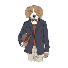 Humanized Beagle breed dog dressed up in vintage outfits. Design for dogs lovers. Fashion anthropomorphic doggy illustration. Animal wear coat, tie bow, monocle, bowler hat. Hand drawn vector.