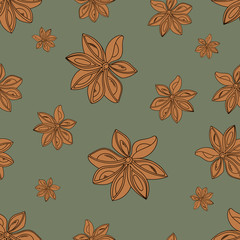 Vector seamless pattern.Seamless pattern with star anise. Cardamom on pastel background.A good idea for a menu of templates, recipes, greetings cards, textiles,       kitchens, cafes, websites, wallpa