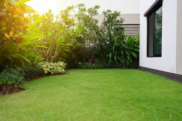 Fotobehang Tuin lawn landscaping with green grass turf in garden home