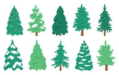 Christmas tree set. Collection of green fir for christmas