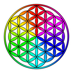 3D Flower of life, rainbow with black outline
