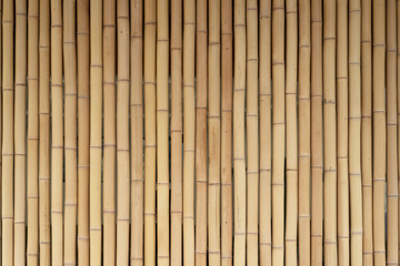 Yellow bamboo wooden fence. Background from bamboo, wood texture.