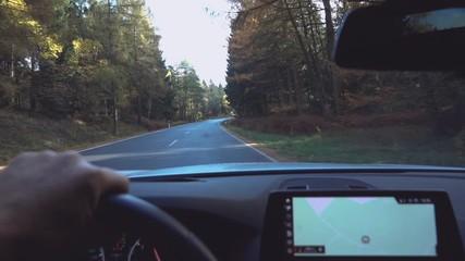 Fotobehang - hands of car driver on steering wheel, road trip, driving on highway road
