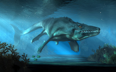 An mosasaurus swims towards you in shallow seas.  This creature was an aquatic reptile that lived in the ocean during the Cretaceous period. 3D Rendering