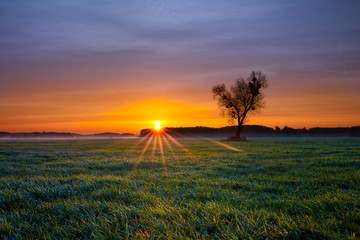 Beautiful colorful and cold autumn sunrise at fields of grass
